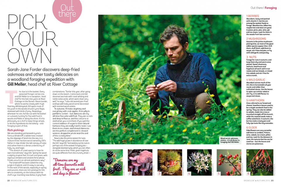 Foraging feature for The Woodland Trust
